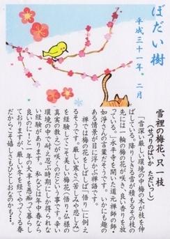 宝寿院 2月のお言葉.jpg