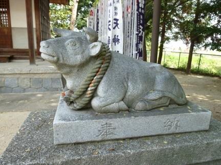 横根藤井神社20.JPG