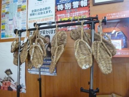 道の駅 うすずみ桜の里・ねお07.JPG